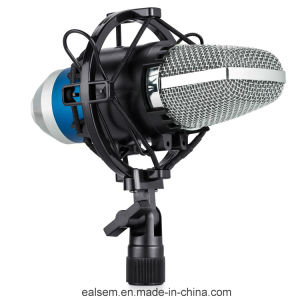 Professional Audio Condencer Small Diaphragm Computer Recording Microphone pictures & photos