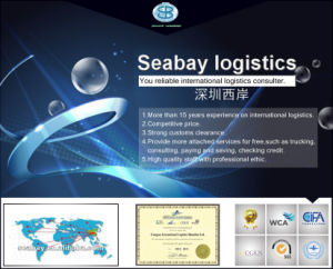 Newest Promotional Sea Freight Rate From China to USA pictures & photos