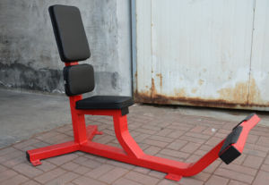 Fitness Equipment / Gym Equipment / Strength Machine - 75 Degree Utility Bench (SH51) pictures & photos