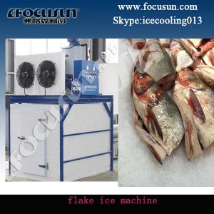 Flake Ice Maker for South Africa pictures & photos