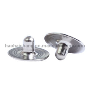 Economic Stainless Steel Rivets for Auto Electronics pictures & photos