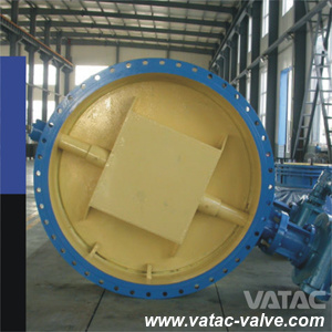 Ductile Iron/Sg Iron Ggg40&Ggg50 Pn16 Wafer Butterfly Valve pictures & photos