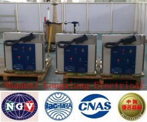 High-Voltage Vacuum Circuit Breaker (ZN63A-12) pictures & photos