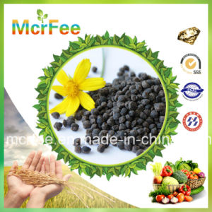 Hot Sale Water Soluble Fertilizer NPK 30-10-10, 15-15-15, 15-5-20 pictures & photos