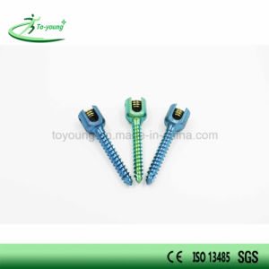 Mono-Axial Pedicle Screw Spinal Implant pictures & photos