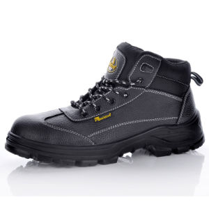 PU/PU Dual Density Safety Shoes with Steel Toe for Men M-8305 pictures & photos