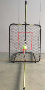 PRO Baseball Practise System (FSS B49) pictures & photos