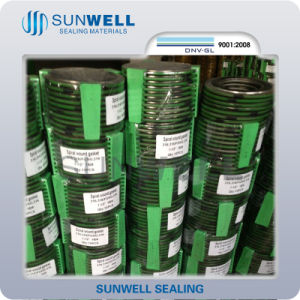Metal Spiral Wound Gasket pictures & photos