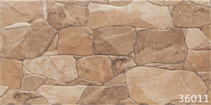 Porcelain Stone Exterior Ceramic Wall Tile (300X600mm) pictures & photos