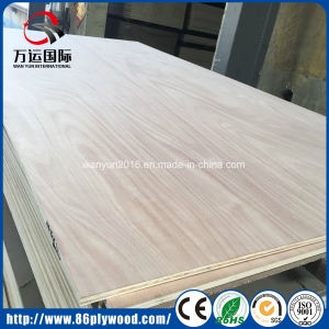Poplar Plywood with Best Price pictures & photos