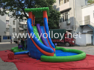 Inflatable Slide with Water Pool for Summer Holiday pictures & photos