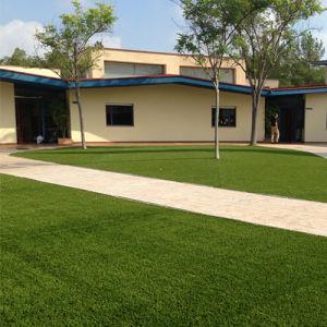 U Shape Landscaping Decoration Artificial Grass pictures & photos