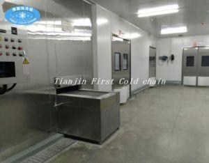 Quick Freezer Machine IQF Spiral Freezer/Freezing pictures & photos