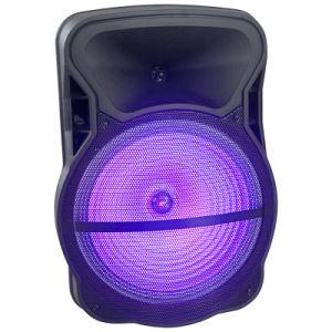 Popular Speaker Box Cx-15D pictures & photos