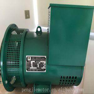 China AC Single Phase and Three Phase Brushless Alternator pictures & photos