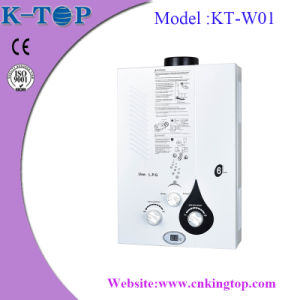 Flue Type White Panel LNG Tankless Gas Water Heater pictures & photos