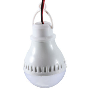 High Quality E27 5W 6000k Home Camping Hunting Emergency Outdoor Light LED Bulbs Lamp for DC 12V pictures & photos