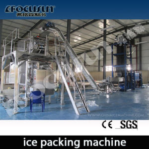 20 Tons/Day Tube Ice Machine with Ice Packer pictures & photos