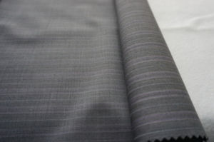 Stripe Wool Fabric for 100% Wool pictures & photos