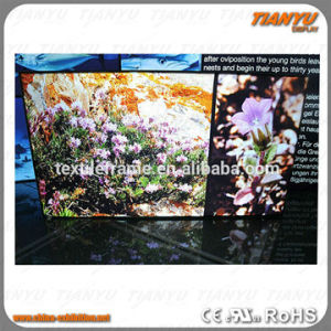 High Brightness DIY Advertising Outdoor LED Light Box pictures & photos