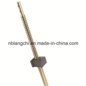 High Precision Copper Trapezoidal Thread Lead Screw with POM Nut pictures & photos