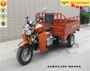 2015 New China Adult Tricycle Motor Cargo Tricycle for Sale pictures & photos