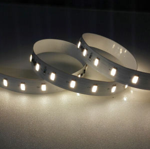 2835 SMD 70LEDs/M Constant Current LED Strip Light pictures & photos
