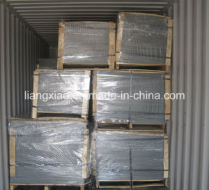 Hot-DIP Galvanized Welded Wire Mesh Panel (HPZS5006) pictures & photos