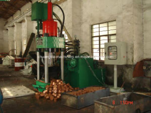 Copper Briquetting Press (SBJ3150B) pictures & photos