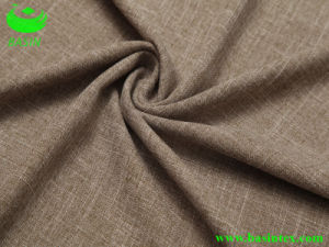 Cotton Polyester Sofa Fabric (BS6008) pictures & photos