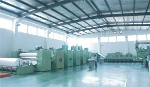 Needle Punching Non Woven Fabric Making Machine with Ce ISO SGS Certificate pictures & photos