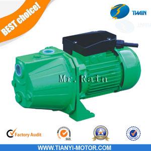 Jets Series Pump Jet-100s 1HP Water Pump Supplier