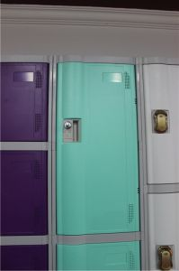 ABS Plastic Locker Cabinets for Fitness Center and Gym pictures & photos