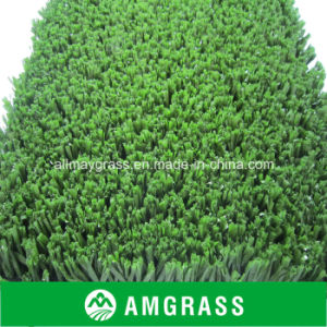Football Field Grass Roofing Grass pictures & photos