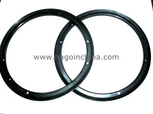 Customized Viton Seal Gasket pictures & photos
