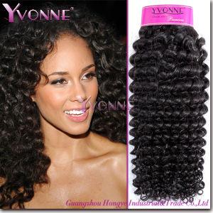 china fashion kinky curl brazilian virgin hair weave hj2