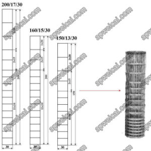 Galvanized Field Fence, Direct Offer From Factory pictures & photos