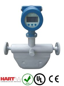 CNG Type Coriolis Mass Flowmeter with Ce Approval pictures & photos