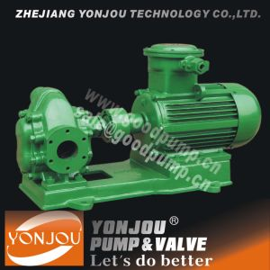 Waste Oil Pump pictures & photos