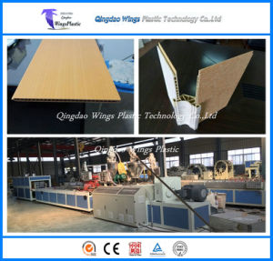 Wood and Plastic Composite WPC Hollow Plate / Panel / Board / Profile Making Machine pictures & photos