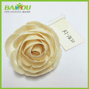 Scented Sola Flower pictures & photos