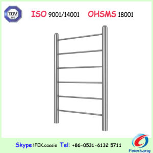 304L Stainless Steel Wallbars Outdoor Gym Equipment pictures & photos