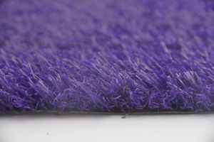 Landscaping Purple Grass