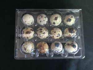 Clear Plastic Container Packing Clamshell Quail Egg Tray 24 Cells pictures & photos