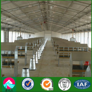 Automatic Poultry Shed Feeding House for Broiler Chicken pictures & photos