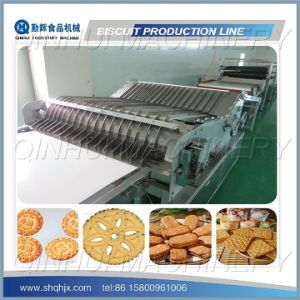 Full Automatic Soft Biscuit Line (Capacity 100KG/HR-1000KG/HR) pictures & photos