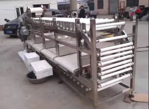 Potato Sorting Machine Fruit Grader Machine Carrot Sorter Machine pictures & photos