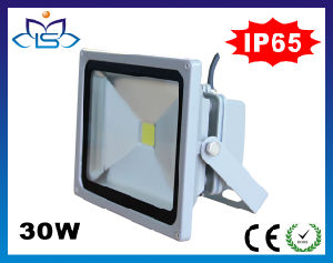 30W IP65 Waterproof SMD LED Flood Light with CE RoHS