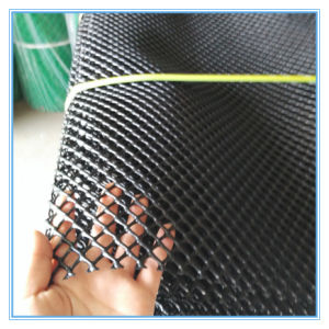 Green Diamand Plastic Mesh pictures & photos