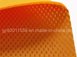Polyester Fabric (GY-S110) pictures & photos
